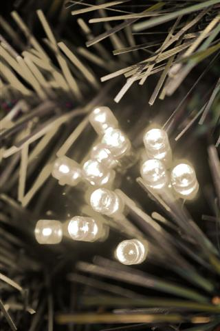 100 Warm White Twinkling LED Connectable Lights