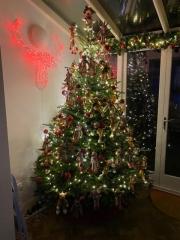 reindeer-tree
